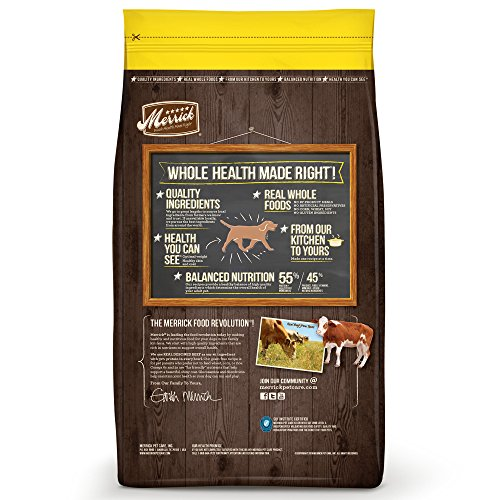 Buy low fat grain free dog food