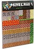 Unbekannt ThinkGeek GE0405 Minecraft Magnete Pack 160