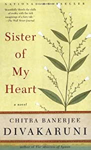 Sister of my heart book
