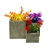 Blue Ribbon EE-1751 Exotic Environments Square Flower Pot Garden Aquarium Ornament