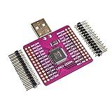Contifan CJMCU-2232 FT2232 HL USB to UART FIFO SPI I2C JTAG RS232 Module FT2232HL N9P6