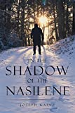 img - for In the Shadow of the Nasilene book / textbook / text book