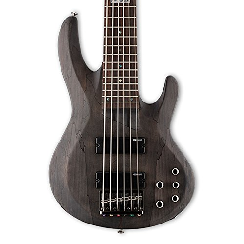ESP LTD B-206SM Spalted Maple 6-String Bass Guitar, See Thru Black Satin from ESP GUITARS