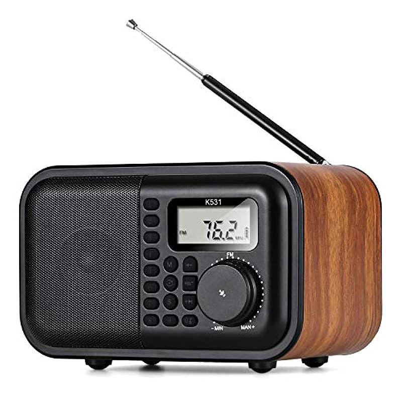 BESROY 최신 와이드 FM / AM 블루투스 기능 18650 가능