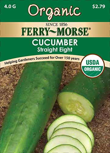 Ferry Morse Greenhouse - Ferry-Morse Organic Cucumber, Straight Eight Seeds