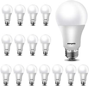 40W Equivalent A19 LED Light Bulb,5000K Daylight, E26 Medium Base, Non-Dimmable LED Light Bulb,450lm,UL Listed 16-Pack
