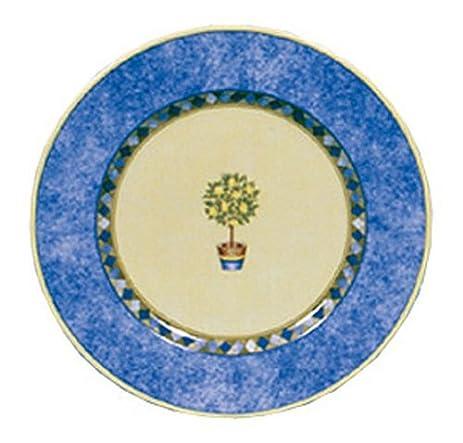 Royal Doulton Carmina 8-Inch Salad Plate Lemon Tree  sc 1 st  Amazon.com & Amazon.com | Royal Doulton Carmina 8-Inch Salad Plate Lemon Tree ...