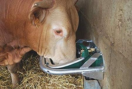 Horizont bebedero: bebedero para caballos de Polyself RC como bebedero para caballos, bebedero para animales o vacas – Bebedero para beber estable y de alta calidad