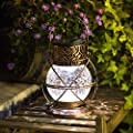 TAKE ME Solar Lantern Outdoor Hanging,Garden Metal&Glass Vintage Color Changing LED Solar Lights