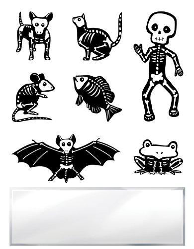 Inkadinkado Inchie Bundle Little Skeletons