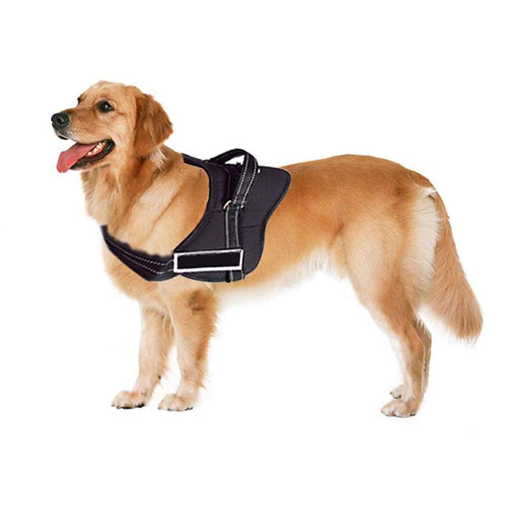 Perro de trabajo para perro de patrulla de perro de compañía ...