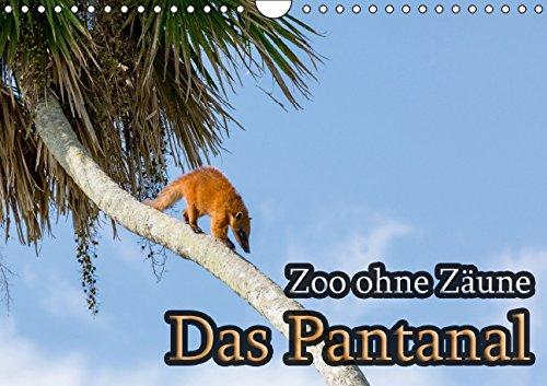 Zoo ohne Zäune - Das Pantanal (Wandkalender 2015 DIN A4 quer): Lebensraum Sumpf - Ein Ausflug in die bedrohte Tierwelt des Pantanal. (Monatskalender, 14 Seiten)