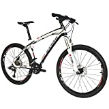 """BEIOU Carbon Fiber Mountain Bike Hardtail MTB LTWOO 30 Speed 13kg 26"""" Professional External Cable Routing Toray T700 CB083"""