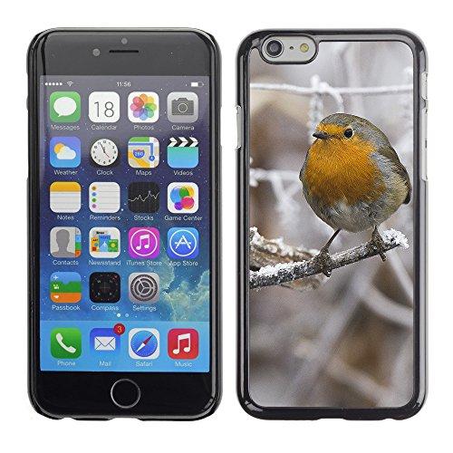 "Premio Sottile Slim Cassa Custodia Case Cover Shell // F00013659 oiseau // Apple iPhone 6 6S 6G PLUS 5.5"""