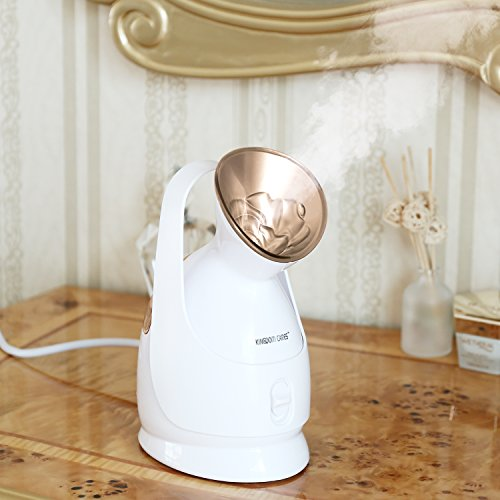 Best of the Best Face steamer