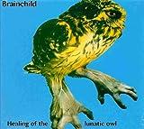 Healing of the Lunatic Owl by Brainchild