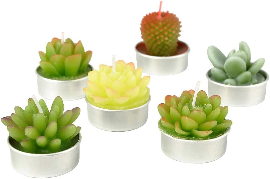 Handmade Delicate Succulent Cactus Candles? Perfect for Birthday Party Home Decor SanSeng Cactus Tealight Candles Wedding Spa 6 Pcs in Pack