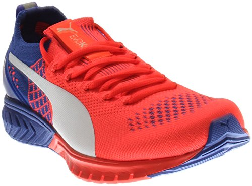 PUMA Women's Ignite Dual Proknit Wn's Running Shoe, Red Blast/Royal Blue, 7 M US