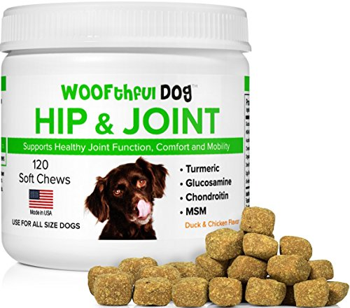 Glucosamine Chondroitin for Dogs with Organic Turmeric and M