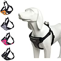 BINGOTA Arnés para perros No Pull Reflective para mascotas Cachorro Freedom Walking Large Grey