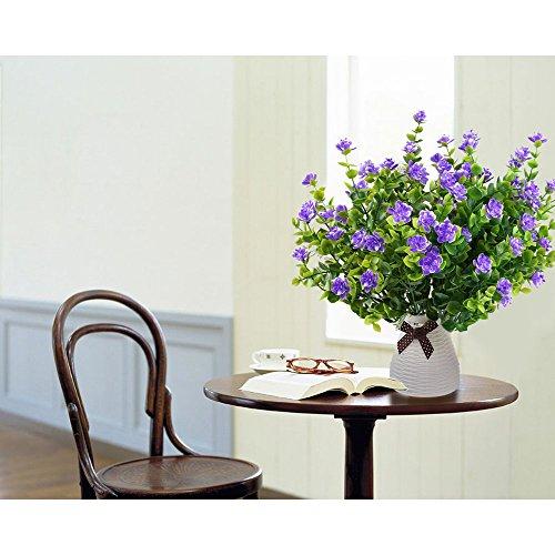 Buy window box plants