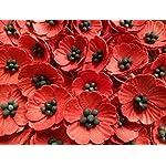 NAVA-CHIANGMAI-Red-Poppy-Mulberry-Paper-Flower-No-Wire-stem-Mulberry-Paper-Flowers-Red-Paper-Flowers-Miniature-Flowers-DIY-Wedding-Wedding-Decor-Artificial-Mulberry-Paper-Flowers-100-Pieces