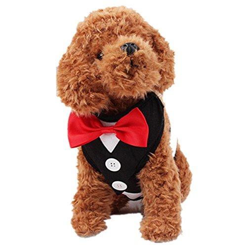 NACOCO Pet Velvet Red Bowtie Gentleman Suit Vest for Dogs with Handle Tuxedo Walk Harness (E Walk Dog Costumes)