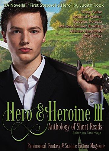 hero vs heroine
