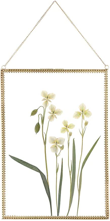 Yolmina Dried Flowers Frame, Wall Hanging Picture Frame Heart Shape Brass Outlook Decor Glass Photo Frame Ornament for Plant Specimen Pressed Flowers Certificate Poster 8x12 inch Frame Only