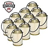 Auto Defender DF401-AD Fuel Filter for 6.7L Turbo Engines (12)