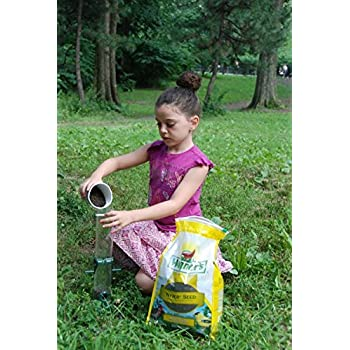 Wagner's 62047 Nyjer Seed Bird Food, 2-Pound Bag