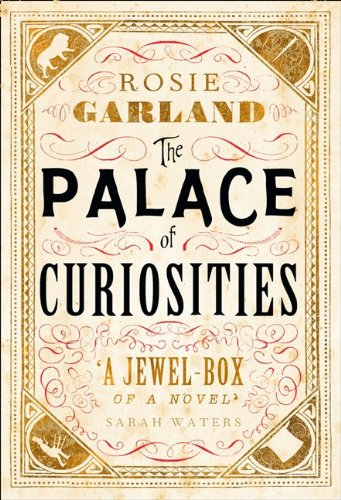 The Palace of Curiosities PDF