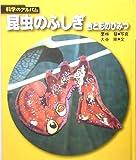 昆虫のふしぎ―色と形のひみつ (科学のアルバム)