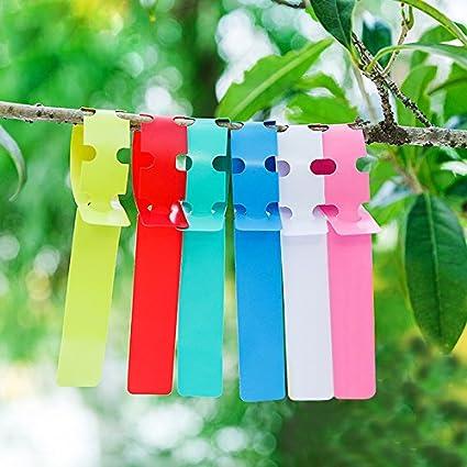 green gelb pink 50 St/ück Pflanze Etikett- TIANOR Mehrfarbig Kunststoff Plastik Pflanzenstecker Pflanzenetiketten Mini Stecketiketten Beschriften Pflanzschilder Schilder 20CM * 2CM Wei/ß blau