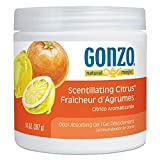 Natural Magic Odor Absorbing Gel, Scentillating Citrus, 14 oz Jar - 4119DEA, (Pack of 5)