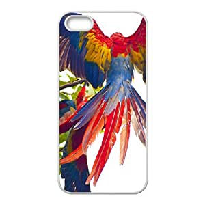Bron To Fly Beautuful Hight Quality Plastic Case for Iphone 5s
