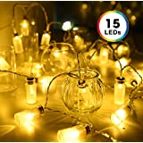 Glass Jar String Lights, DecorNova 7.8 Feet 15 LED Battery Operated Fairy Mason Jar String Lights with 3 AA Battery Case & 8 Modes for Bedroom Christmas Weddings Camping Parties, Warm White