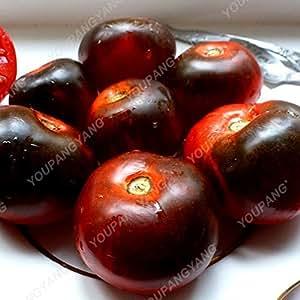 100pcs/bag Rare Seeds Tomato Pertsevidnyy Rozovyy - Red Pepper Organic Heirloom Variety Vegetable Seeds For Home Garden Planting Burgundy