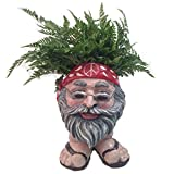 "Homestyles Muggly #37489 Hippie ""Jerry"" Painted 13″ Face Planter Garden Statue (Holds 4″ Pot)"