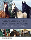 img - for Osteopathy and the Treatment of Horses by Anthony Pusey (2010-10-01) book / textbook / text book