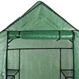 Mini Walk-in Greenhouse Indoor Outdoor -2 Tier 8