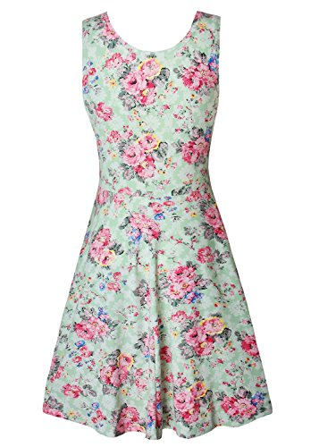 Womens Casual Fit and Flare Floral Sleeveless Party Evening Cocktail Dress Light Green X-Large