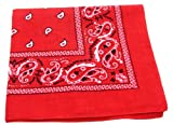 Bandanas by the Dozen (12 units per pack, 100% cotton) [Red Paisley]