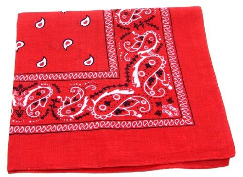 Red Paisley Bandanna -