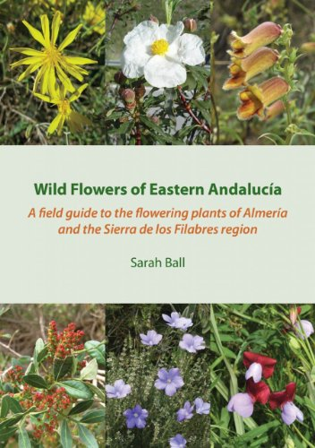 Wild Flowers of Eastern Andalucia: A Field Guide to the Flowering Plants of Almeria and the Sierra De Los Filabres Region ()