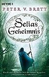 Selias Geheimnis: Novelle (Erzählungen aus Arlens Welt, Band 3)