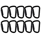 Fusion Climb Tacoma Steel Auto Lock D-Shaped with Key Nose Carabiner 10-Pack