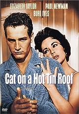 cat on a hot tin roof  novel summary  act       novelguidecat on a hot tin roof