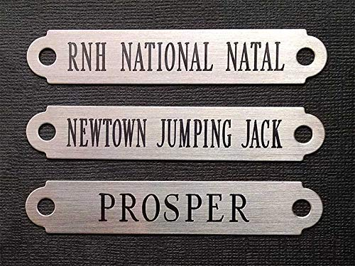 HALTER PLATE MEDIUM 3.5 x .625 x .020 Solid Nickel Silver Custom Engraved Horse or Pet Collar I.D Tag
