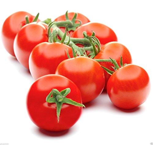 campari-tomato-seedsvery-juicyhigh-sugar-levellow-aciditylack-of-mealiness